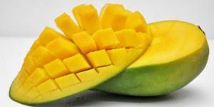 Kalori Mangga